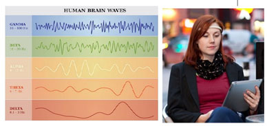 Figure 2: Brainwave Adaptive Assessments